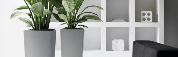 Benefits Of Self Watering Planters And Where To Find A Large Lechuza Indoor Planter Box Or Plant System